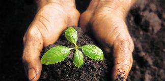 Νέα βήματα της ΕΕ για λιπάσματα φιλικότερα προς το περιβάλλον