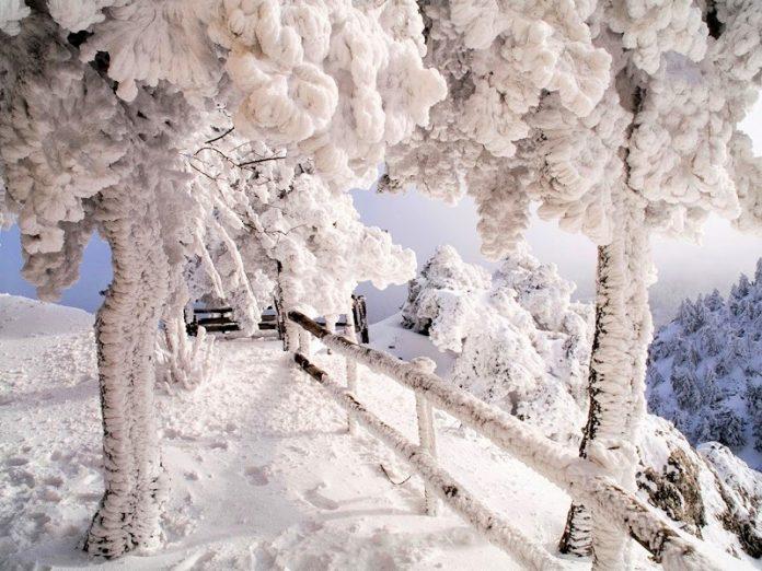 Χιονίζει στο Πήλιο - Κλειστά τα σχολεία στα ορεινά