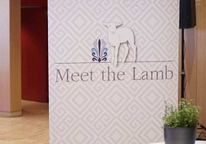 Meet the lamb: Δράσεις για το ευρύ κοινό σε Αθήνα και Θεσσαλονίκη