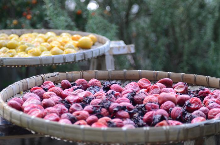 Τα ελληνικά αποξηραμένα φρούτα αναζητούν τη θέση τους