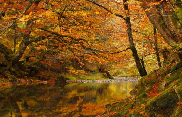 Σε φορείς οι προστατευόμενες περιοχές φυσικού περιβάλλοντος