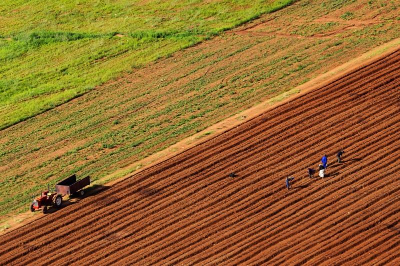 """Ημερίδα με θέμα """"Σχεδιασμός και ανάπτυξη του αγροτικού τομέα στην Ήπειρο"""""""
