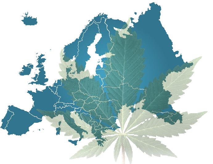 Και η Ευρώπη «ψάχνεται» για όριο ασφαλείας στην κάνναβη