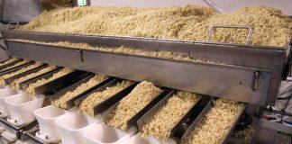 Νέες αγορές αναζητούν οι παραγωγοί ρυζιού από την Κ. Μακεδονία - Ιδρύουν Διαπαγγελματική