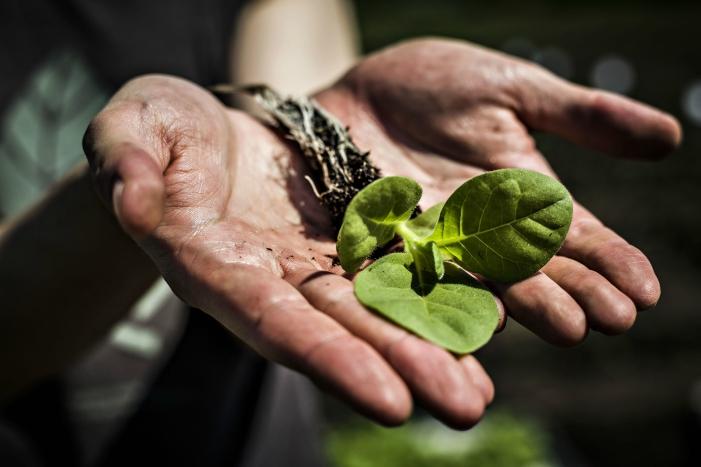Εντείνεται η παγκόσμια επισιτιστική ανασφάλεια
