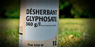 glyphosate-glifosati