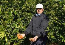 «Καμιά περικοπή στους αγρότες που πήραν σύνταξη μέχρι 31/12/2016»