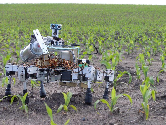 robots-agrotes