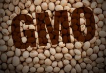 προϊόντα γενετικά τροποποιημένης σόγιας