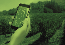 Συνεργατική Καινοτομία: Παράθυρο σύνδεσης των Ελλήνων αγροτών με φορείς και εταιρείες διεθνώς