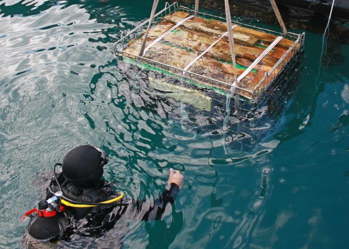 Εμφιάλωση, εμφιάλωση και τοποθέτηση στον βυθό της θάλασσας και εμφιάλωση και τοποθέτηση κάτω από γλυκό νερό.