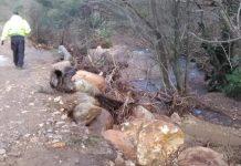 Ενίσχυση 12,5 εκατ. ευρώ στο νησί της Λέσβου για τις φυσικές καταστροφές του Ιανουαρίου