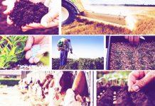 agrotikes-eisroes