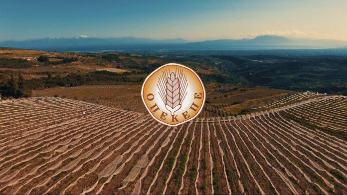 Πληρωμή ΟΠΕΚΕΠΕ ύψους 2,2 εκατ. ευρώ σε νέους αγρότες και LEADER