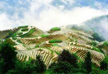 """Τα 13 νέα τοπία """"αγροτικής κληρονομιάς"""" που πρόσθεσε ο FAO στη λίστα του"""