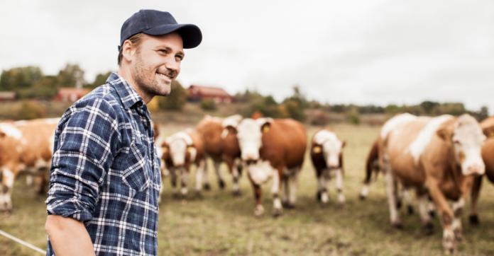 Χρηματοδότηση 30.000 ευρώ από Bayer σε φάρμες που μεριμνούν για την ευζωία των βοοειδών