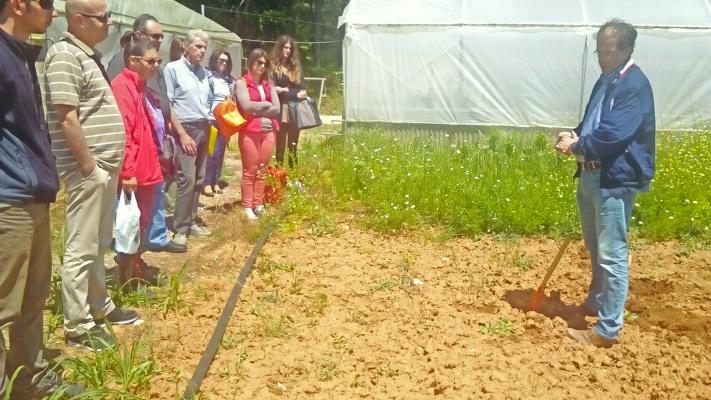 Στην Αλεξανδρούπολη και την Ορεστιάδα πραγματοποιήθηκαν με επιτυχία Σχολεία Αγρού για την καλλιέργεια αρωματικών φυτών από τις αρμόδιες ΔΑΟΚ με τα εξής αντικείμενα: εδαφολογία, φύτευση, τρόπος καλλιέργειας, αποφύλλωση, διαλογή, αποξήρανση, συσκευασία βοτάνων και μάρκετινγκ.
