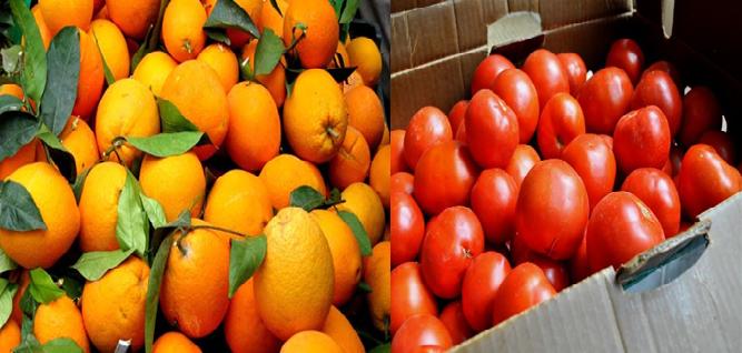 Δέσμευση 2 περίπου τόνων ντομάτας και πορτοκαλιών από τη ΔΑΟΚ Πειραιά