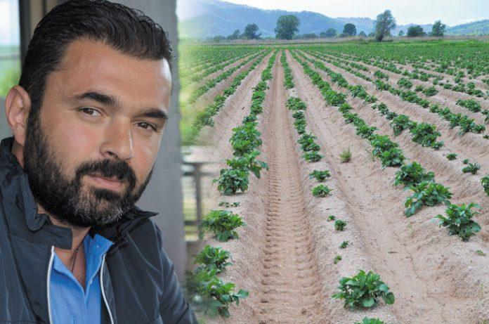 Την ώρα που οι Έλληνες καταναλωτές αγοράζουν αιγυπτιακή πατάτα, η ΠΓΕ Νευροκοπίου πουλήθηκε φέτος έως και 6 λεπτά με μέσο όρο τα 10-12 λεπτά.