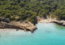 """ΠΕ Νήσων Αττικής: Πρόσκληση υποβολής δηλώσεων για το πρόγραμμα «Πολιτισμός και Περιβάλλον """"Εν Πλώ""""»"""