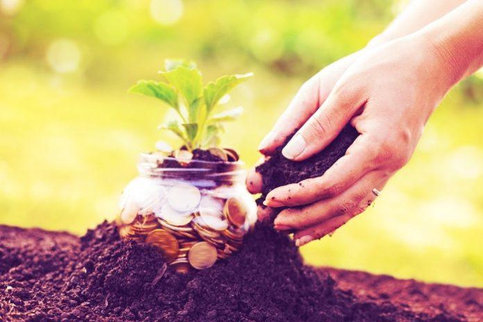 Ποσό ύψους 32 εκατ. ευρώ πλήρωσε ο ΟΠΕΚΕΠΕ – Καταβλήθηκαν οι ενισχύσεις για Μείωση Νιτρορύπανσης, ΚΟΜΦΟΥΖΙΟ και Ορυζώνες