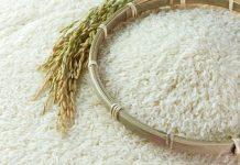 Συμφωνία της Πειραιώς για Συμβολαιακή Γεωργία με την εταιρεία Agrino