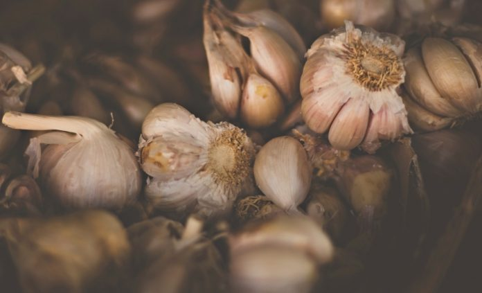 skordo-garlic