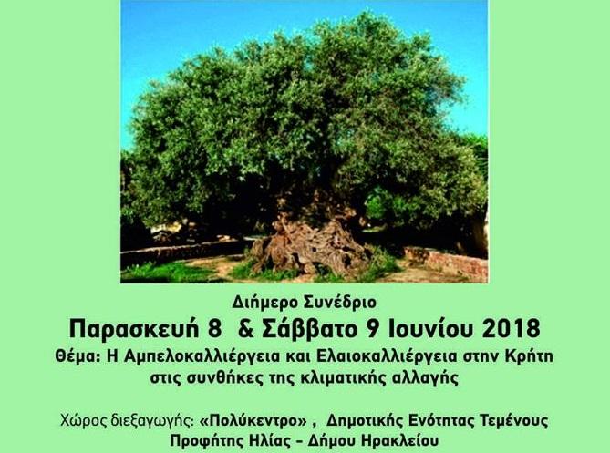 Κρήτη: Συνέδριο για την αμπελοκαλλιέργεια την Παρασκευή 8 και το Σάββατο 9 Ιουνίου