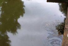 Τρίκαλα: Πετρελαιοκηλίδα στον Ληθαίο ποταμό
