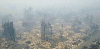 Η ανθρώπινη λαίλαπα: Ποσό δάσος καταστρέφαμε κάθε δευτερόλεπτο του 2017
