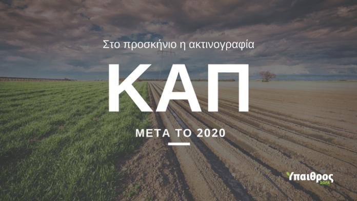 cap-2020