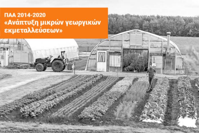 ενίσχυση για την ανάπτυξη των μικρών γεωργικών εκμεταλλεύσεων