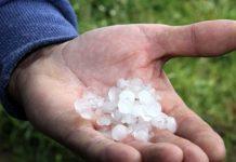Φλώρινα: Χαλάζι σε μέγεθος μικρού κερασιού κατέστρεψε καλλιέργειες
