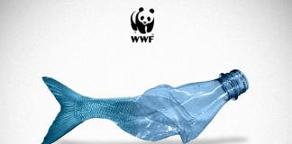 Η Μεσόγειος εκπέμπει SOS, καθώς κινδυνεύει να μετατραπεί σε μια «πλαστική θάλασσα»