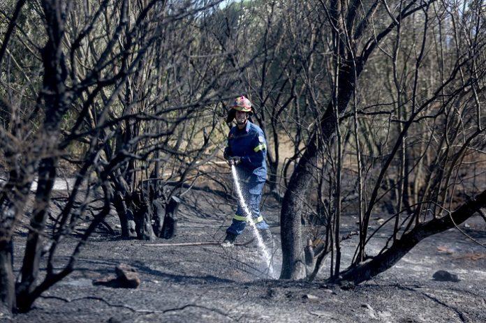 Υπό μερικό έλεγχο η πυρκαγιά στο άλσος Συγγρού