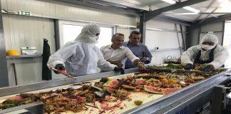 Άρχισε η μετατροπή υπολειμμάτων τροφίμων σε ζωοτροφές