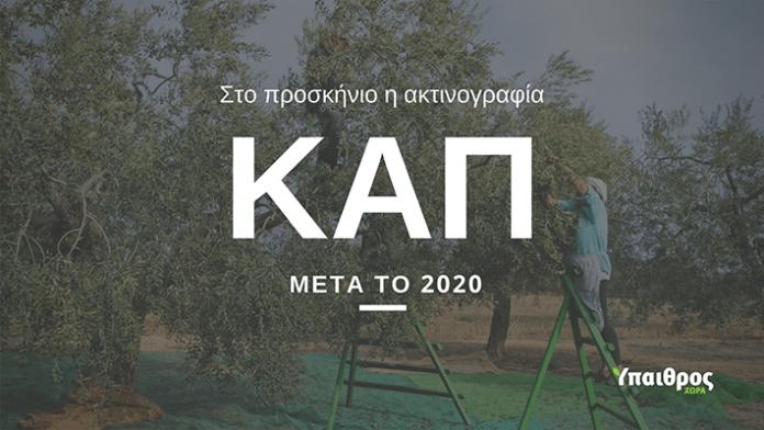 cap-meta-to-2020-afiewroma-IIIΙ-min