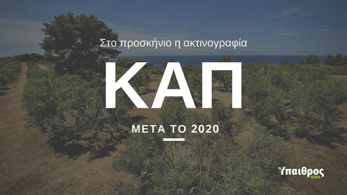 cap-meta-to-2020-afiewroma-III
