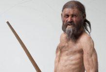 Καπνιστό κρέας, σιτάρι και δηλητηριώδης φτέρη ήταν το τελευταίο γεύμα του Ανθρώπου των Πάγων