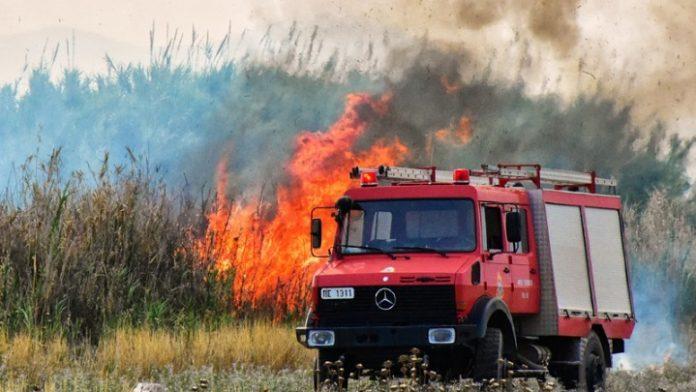 Ημερίδα για τις δασικές πυρκαγιές την Τρίτη 4 Δεκεμβρίου από τον ΓΕΩΤ.Ε.Ε