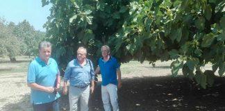 Αποστόλου: Αρχίζουν άμεσα οι εκτιμήσεις ζημιών από τις βροχοπτώσεις στις καλλιέργειες σύκων της Εύβοιας