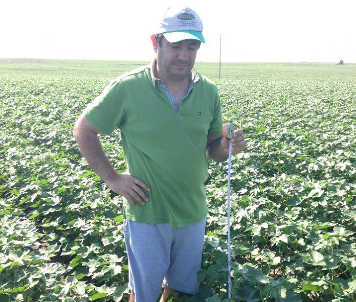 Ερτζάν Χουσεΐν: Ο παραγωγός με τα 740 στρ. βάμβακος που επενδύει στη γνώση και την τεχνολογία
