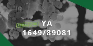 Ραγδαίες εξελίξεις φέρνει στους αμπελουργικούς φορείς η ΥΑ για τις ποικιλίες αμπέλου