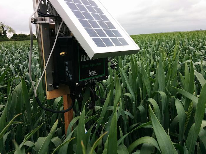denmark smart agriculture