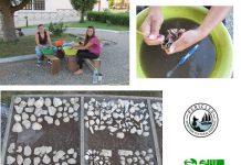 Πρόγραμμα PERICLES για την αρχαία αλιεία στα Άβδηρα