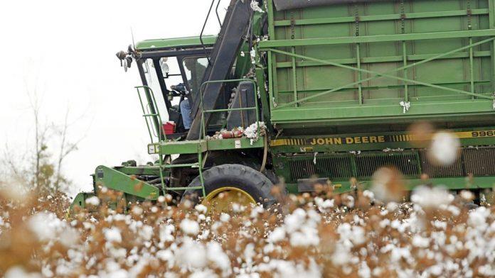 Νέα δεδομένα για την εγχώρια αγορά του σύσπορου βάμβακος