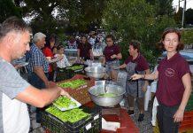 Υπαίθριες τοπικές αγροτικές και πολιτιστικές γιορτές