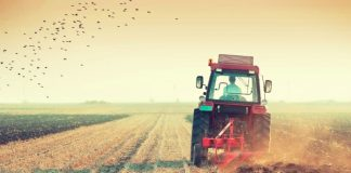 Παράθυρο για φθηνό αγροτικό πετρέλαιο άνοιξε η Τελιγιορίδου