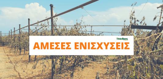 ameses-enisxiseis-agroton-ypaithros-chora-report