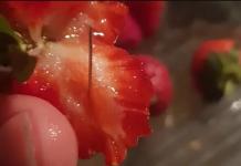 Αυστραλία-Φράουλες με βελόνες: Η βιομηχανία της φράουλας σε κρίση